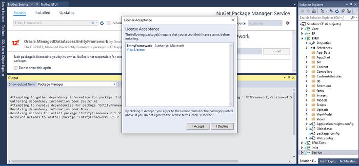 Entity Framework Environment Setup - Accept Agreement